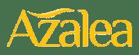 Azalea Beauty Hijab